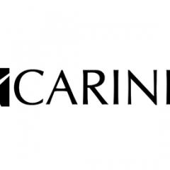 Rozmiary Carinii