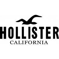 Rozmiary Hollister