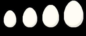 wielkisci-jajek